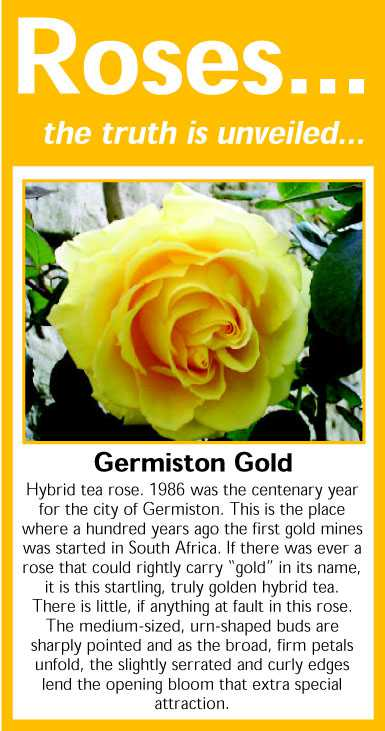 034 Germiston Gold