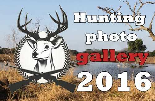 Entries for Hunting Photo gallary
