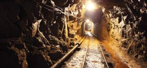 DEPARTMENT TO APPEAL MINING CHARTER JUDGEMENT