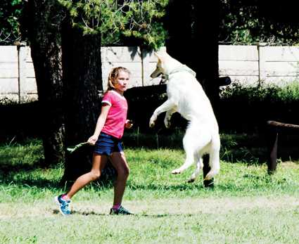 Jané van den Berg of Orkney and her white Dutch Shepherd have a very close bond.